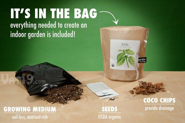 Garden In A Bag Basil Culinary Herbs Herbs Indoors 400 x 300