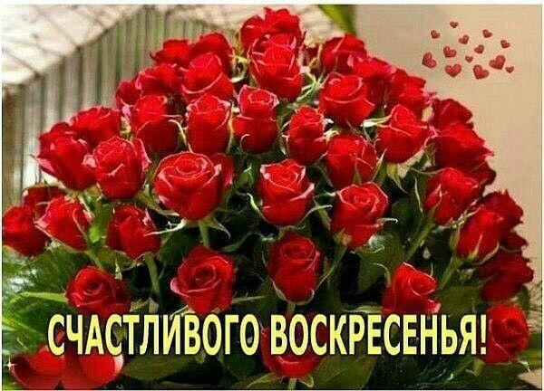 ноги надевали воскресенье анимация розы узнать свободное для