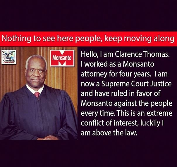 Monsanto is heavily into the production of the dreaded genetically modified foods.