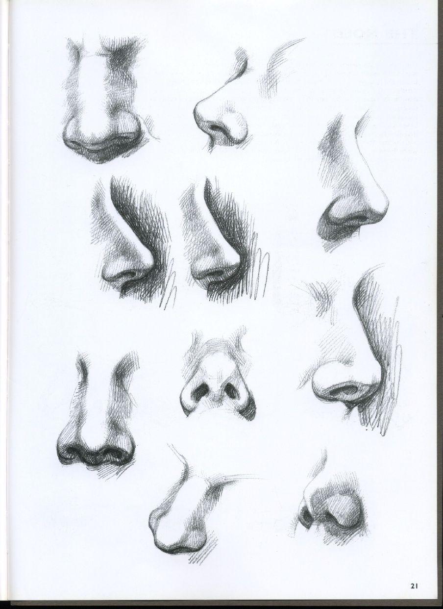 Scribd Es El Sitio Social De Lectura Y Editoriales Mas Grande Del Mundo Dibujar Cabezas Dibujo Nariz Dibujos Retratos