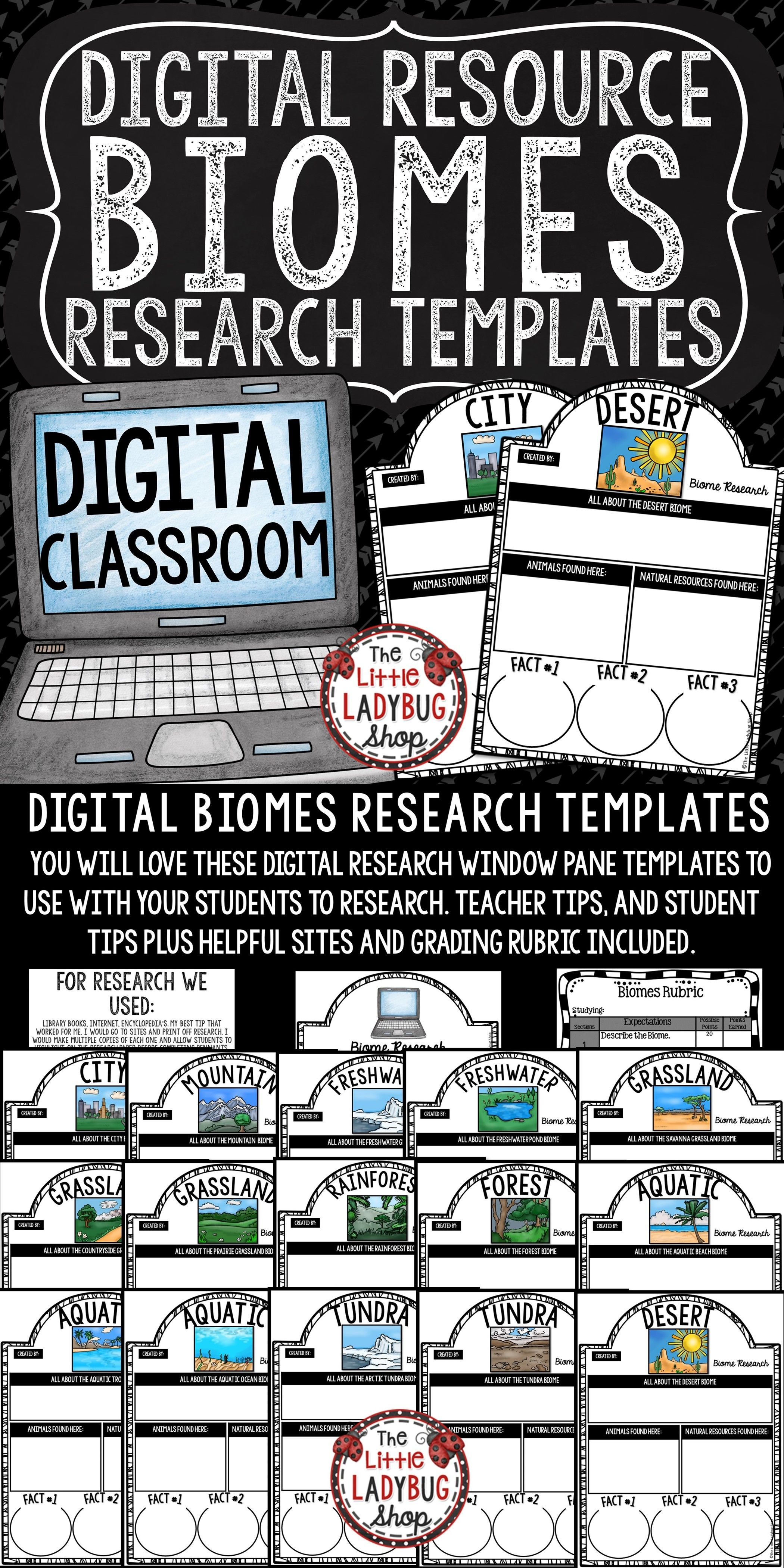 Digital Ecosystems And Biomes Research Project For