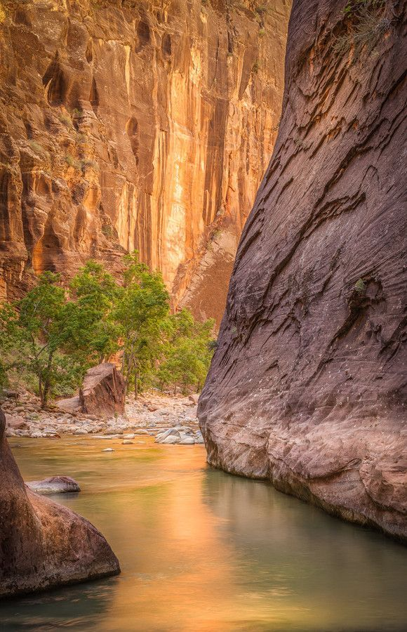 Zion National Park Quotes: Zion National Park, Utah