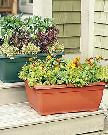 Self Watering Patio Planters