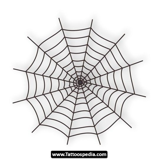 Spiderweb Tattoos Index Of Tatuaje Spider Web Tattoo With