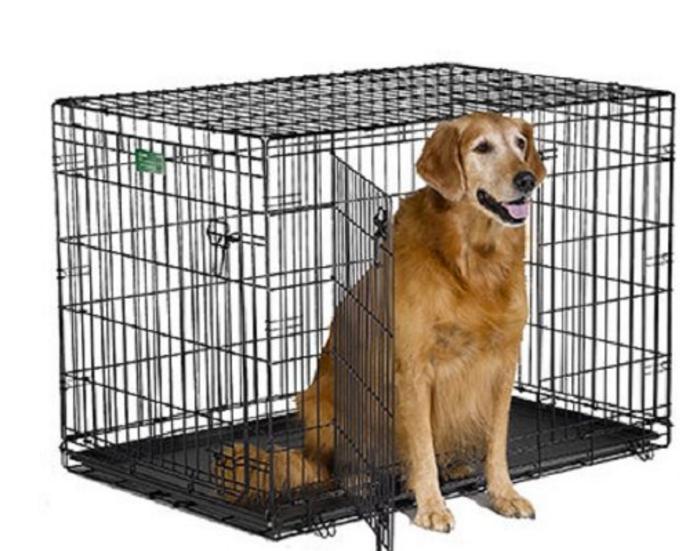 Midwest Cat Crates Cat Pinterest Cat Crate Pet Dogs And Dog Cat