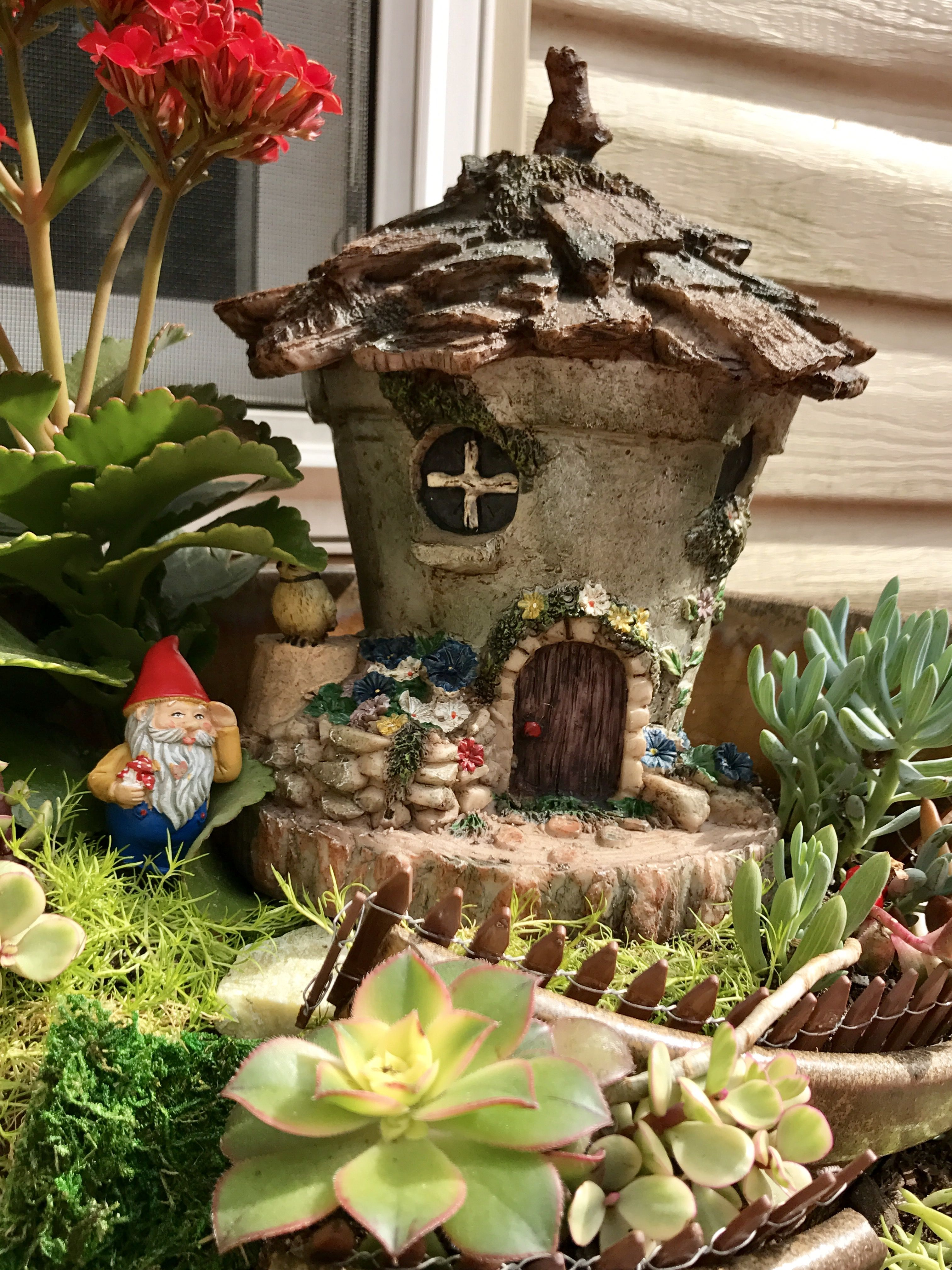 Plante Soleil Direct A Broken Pot Whimsical Garden Used Succulents Plants Only So