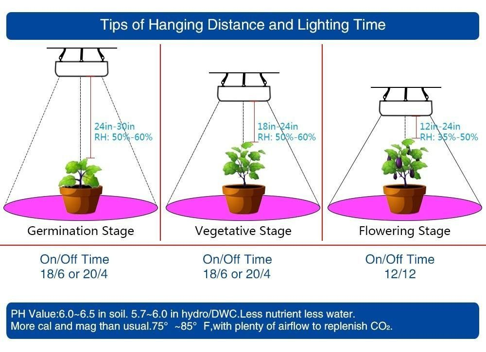 Hydroponic Lights Battery Operated Led Plant Indoor Light 300w Vertical Farming Systems Growing For Growth