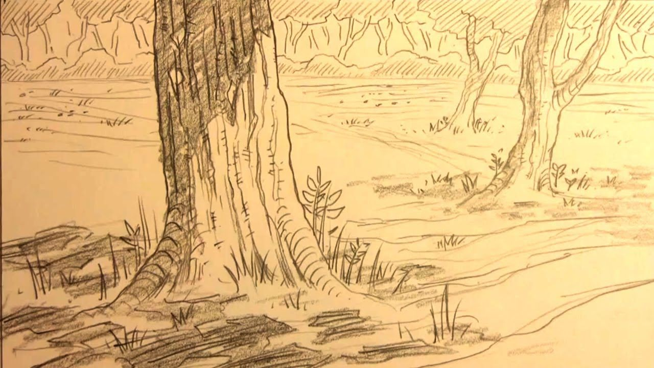 How To Draw Forest Backgrounds Forest Sketch Background Drawing Forest Drawing