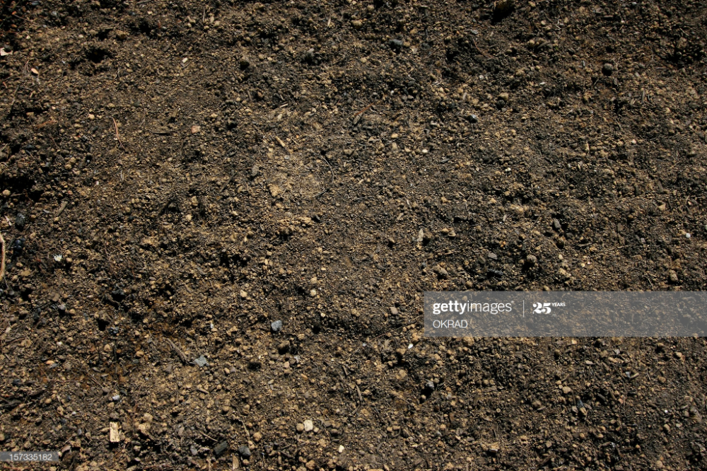 Topsoil Background In 2020 Stock Images Free Agriculture Photos Top Soil