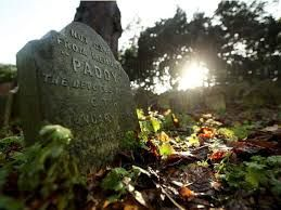 Image result for the oldest pet cemetery in paris, images