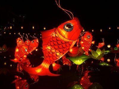more fish lanterns Chinese festival