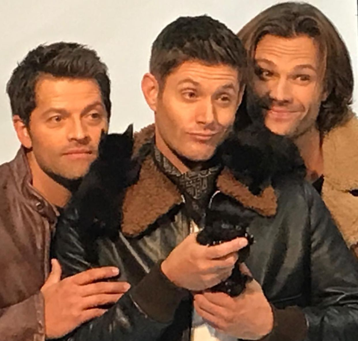 XD aaaww!!!! Misha, Jensen and Jared with kittens ...