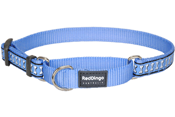 NEW TAMPA BAY RAYS PET SET DOG COLLAR LEASH ID TAG ALL SIZES LICENSED