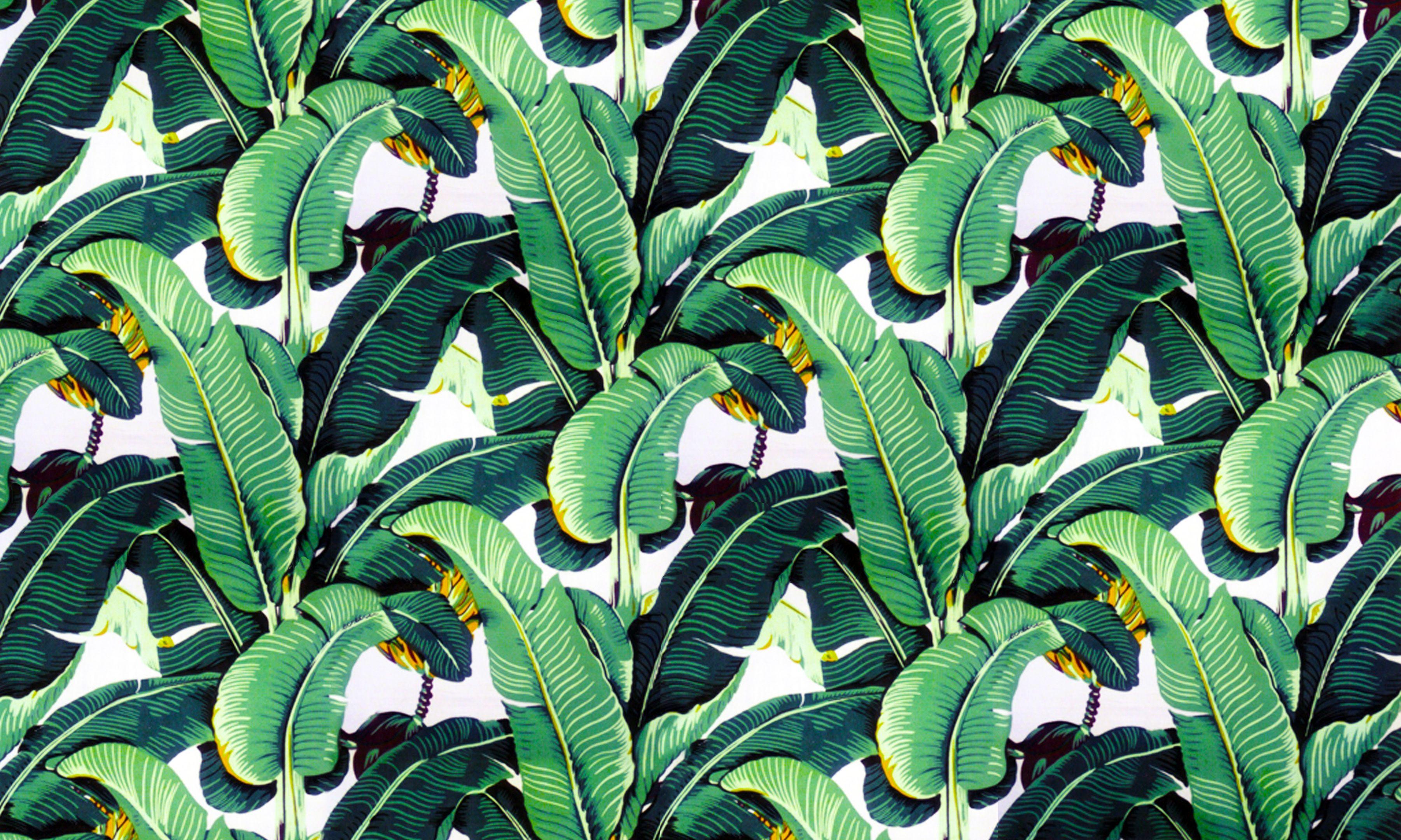 Martinica Wall Tapestry Leaf Wallpaper Banana Leaf Wallpaper Iconic Wallpaper