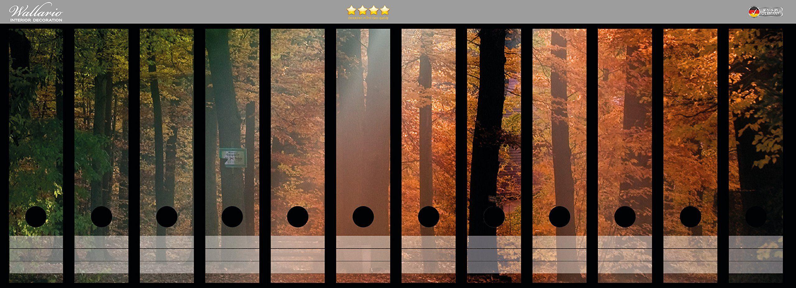 File Art 4 Design Ordner-Etiketten Sunflower.................................030