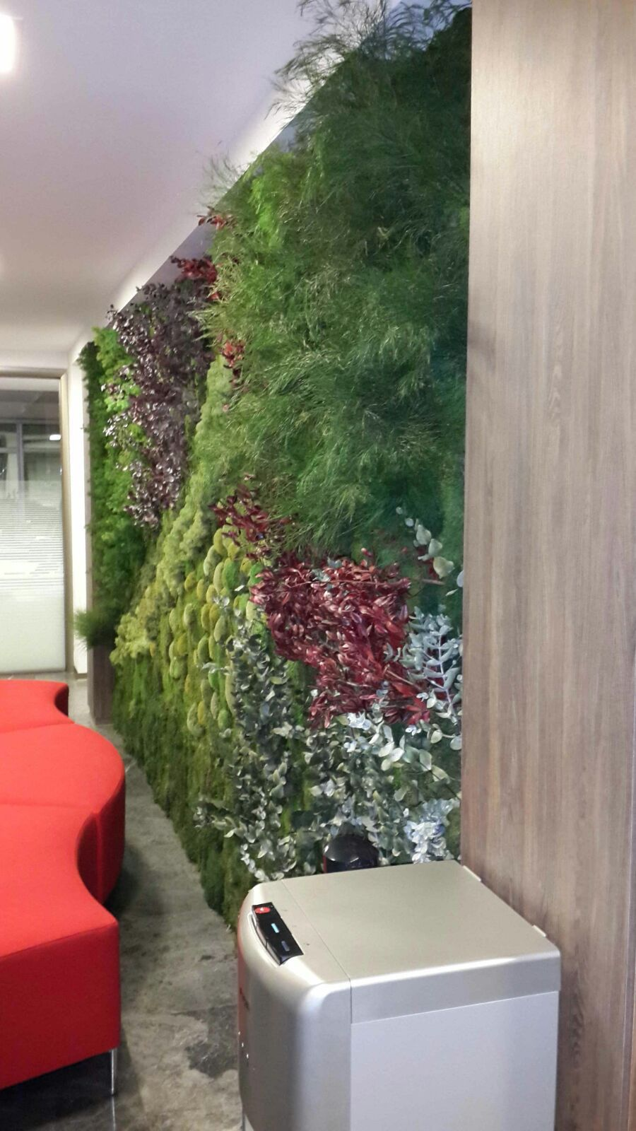 Preserved plant wall interior design