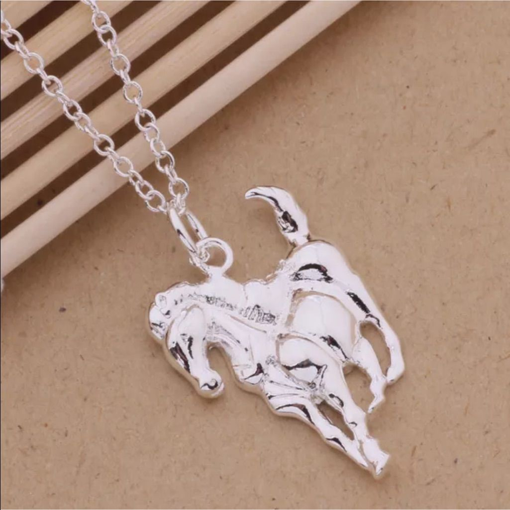 Sterling silver horse pendant necklace nwot sterling silver horse pendant necklace aloadofball Gallery