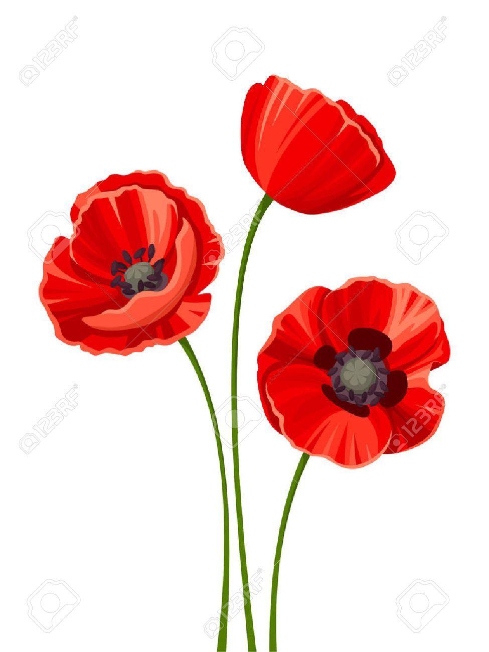 Rote Mohnblumen Von Sonstiger Hersteller 01art50400012 Kaufen