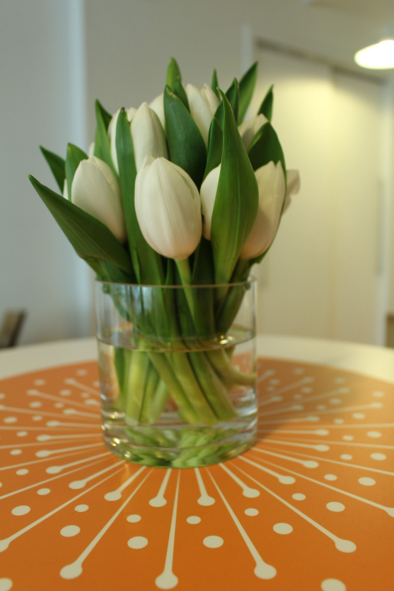 A little burst of happiness in a small compact alltulip
