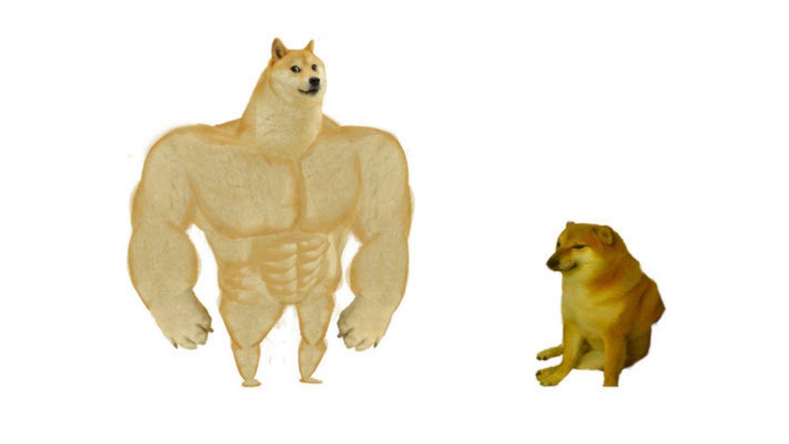 Swole Doge Vs Cheems In 2020 Doge Meme Meme Template Create Memes