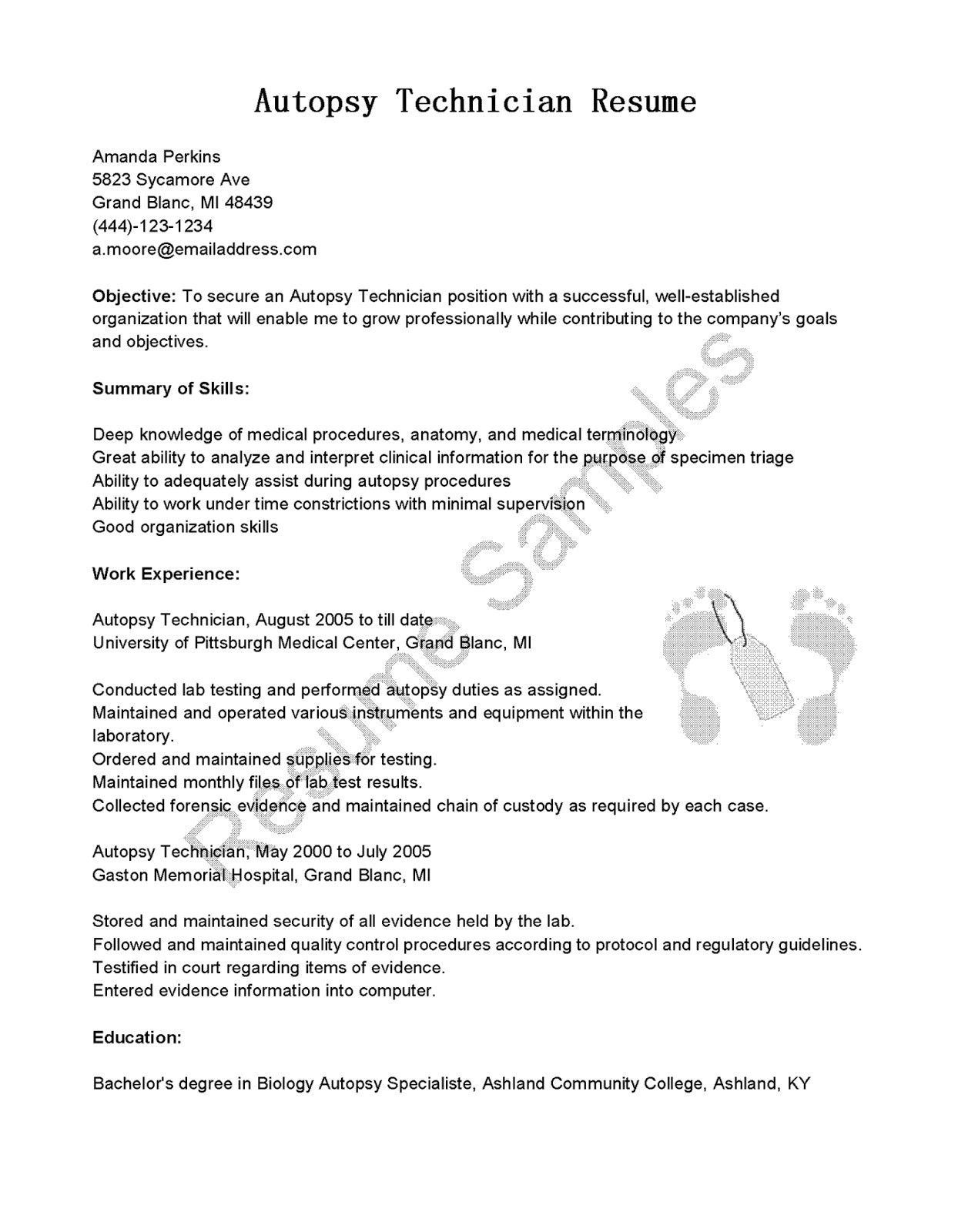 pin di resume templates template cv word download free example of for police officer elementary school teacher examples