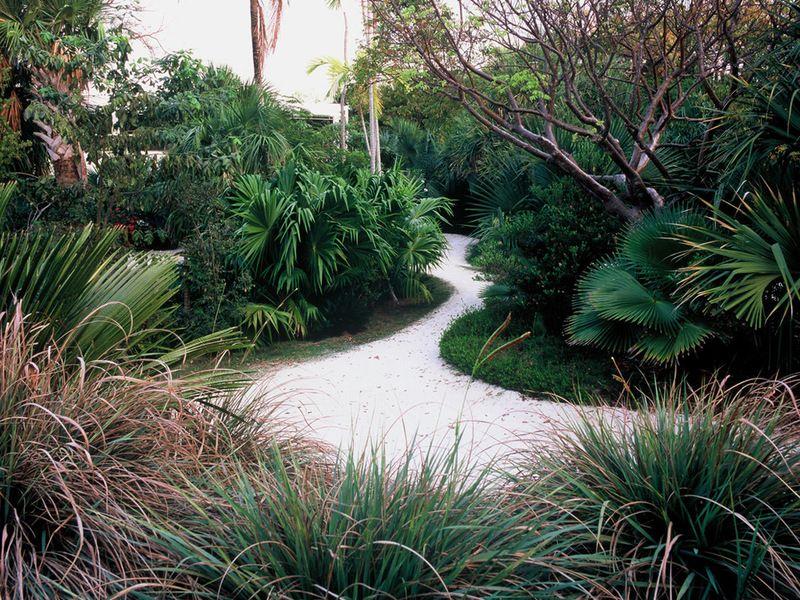 Garden Ideas · Tropical Landscape By Raymond Jungles, Inc.