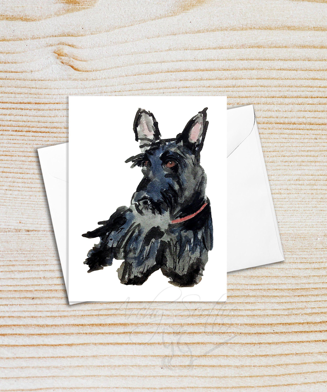 Scottish Terrier Blank Note Card