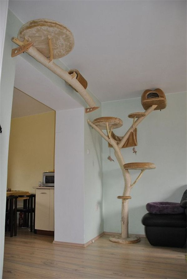Cat Tree Don T Really Like The Aesthetics Of This But I Functionality Design Cool Trees That Look Real