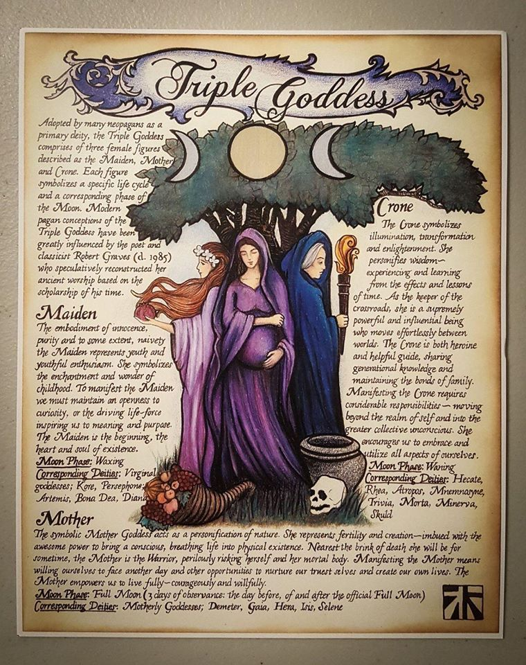 Wise Witches & Witchcraft