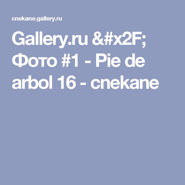 Gallery.ru / Фото #1 - Pie de arbol 16 - cnekane