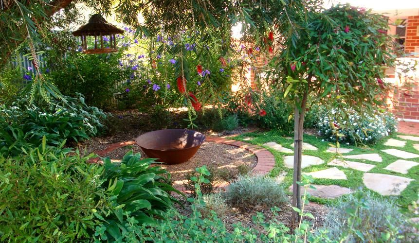 Australian Native Garden Garden Design Ideas