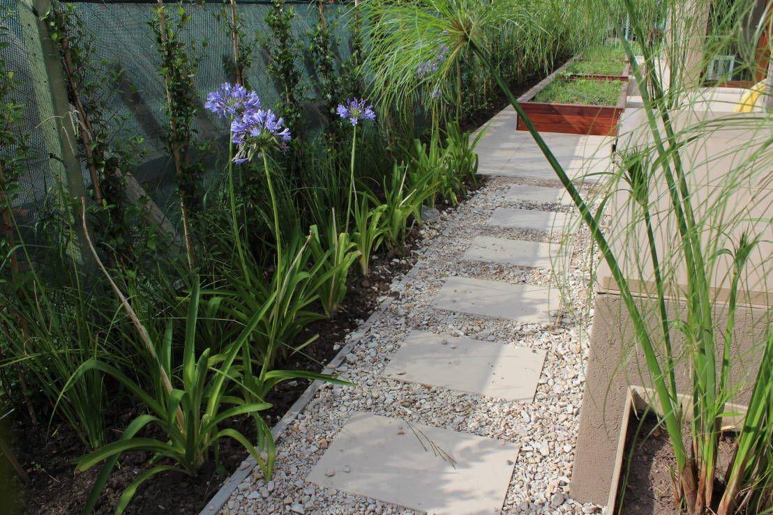 plantas de exterior para decorar jardines terrazas y parques