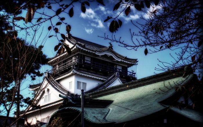 Une Vue De Chateau Okazaki Fond D Ecran Paysage Japonais Fond D Ecran Apercu Japon Paysage Fond Ecran Paysage Paysage