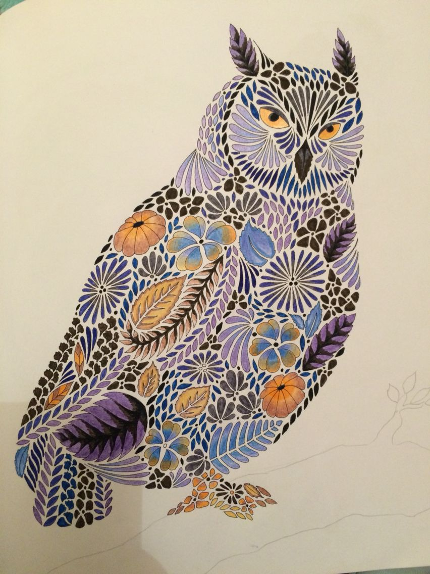 Completed Owl In Millie Marotta Animal Kingdom Used Pencils An Millie Marotta Animal Kingdom Animal Kingdom Colouring Book Millie Marotta Tropical Wonderland