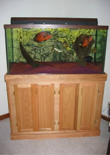 Build An Aquarium Stand For The Home Pinterest