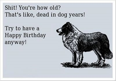 50 Best Funny Happy Birthday E Cards 3 | Funny E Cards