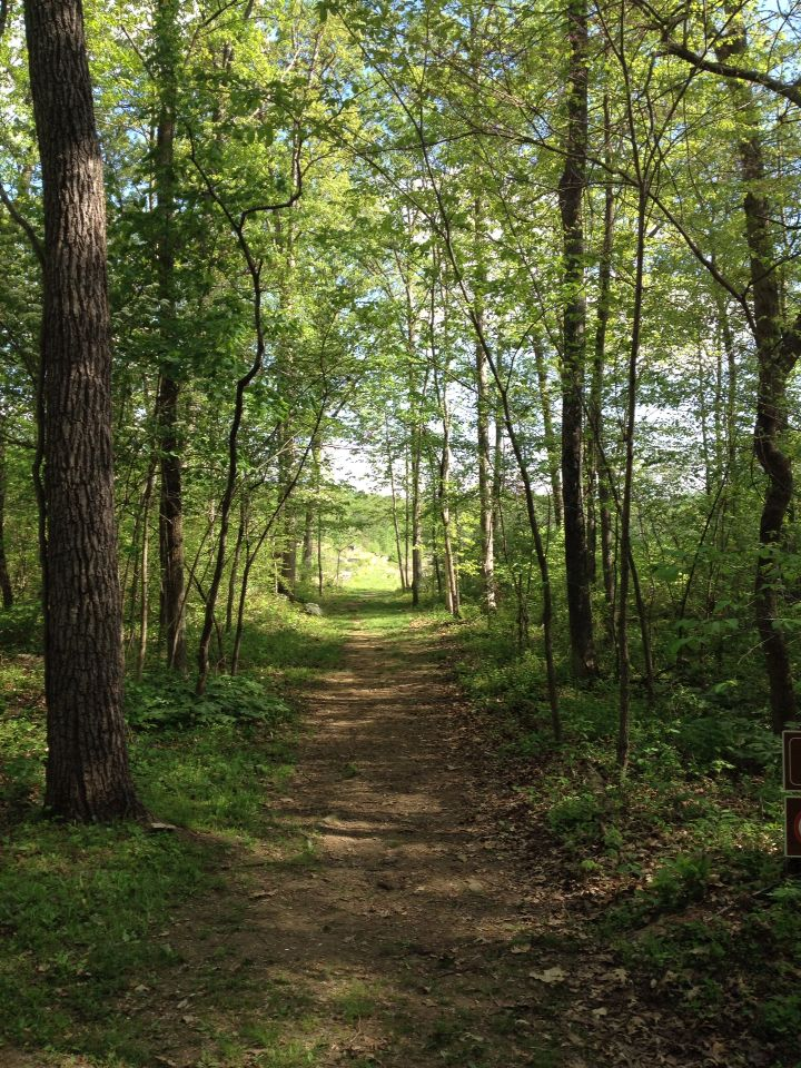 Devils Den Is Straight Ahead With Images Tree Nature Paths
