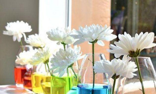 Photo of Tischdekoration-Idee-fuer-eine-Gartenparty-oder-einen-Sommer.jpg