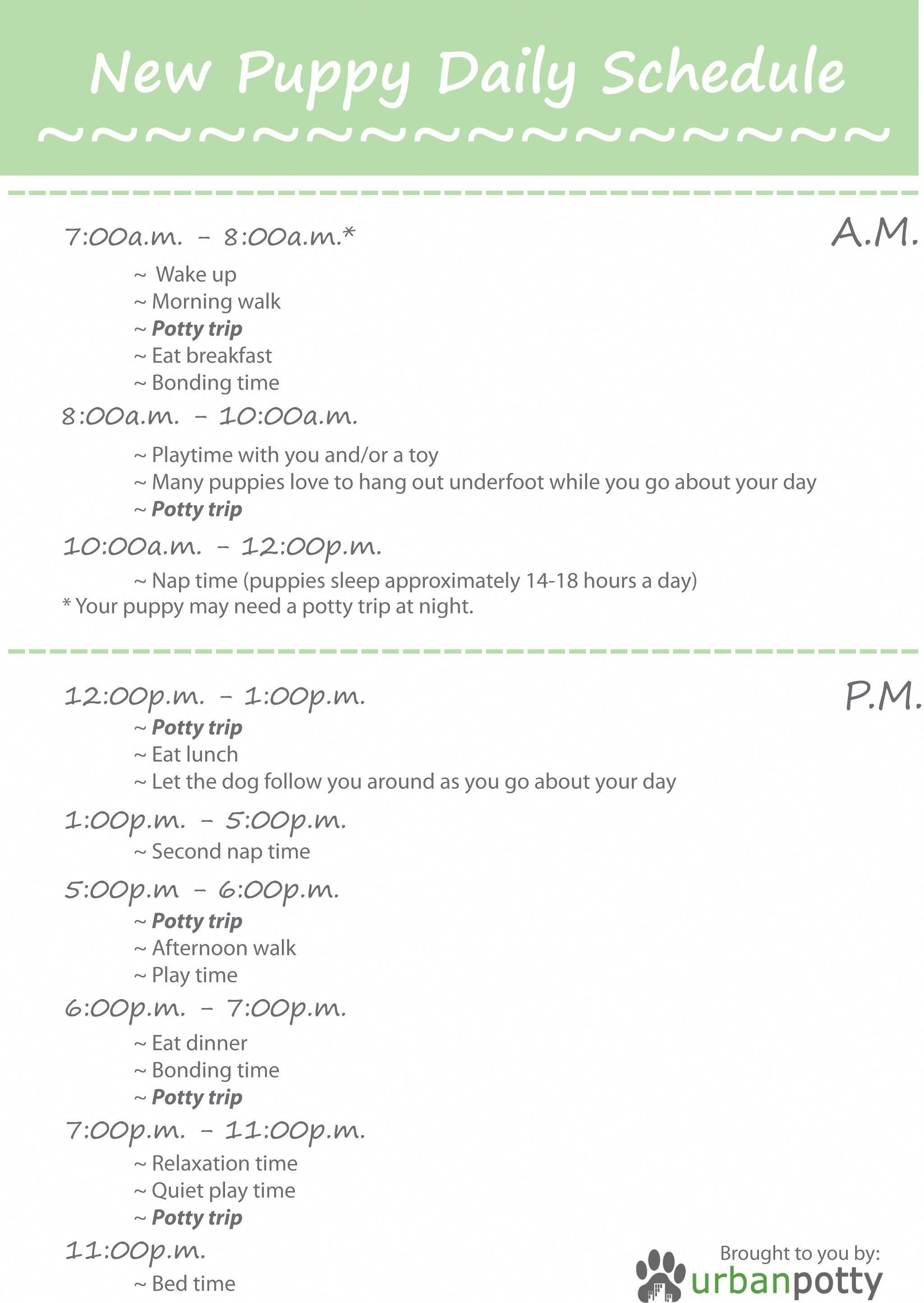 Printable Checklist by Urban Potty New Puppy Daily