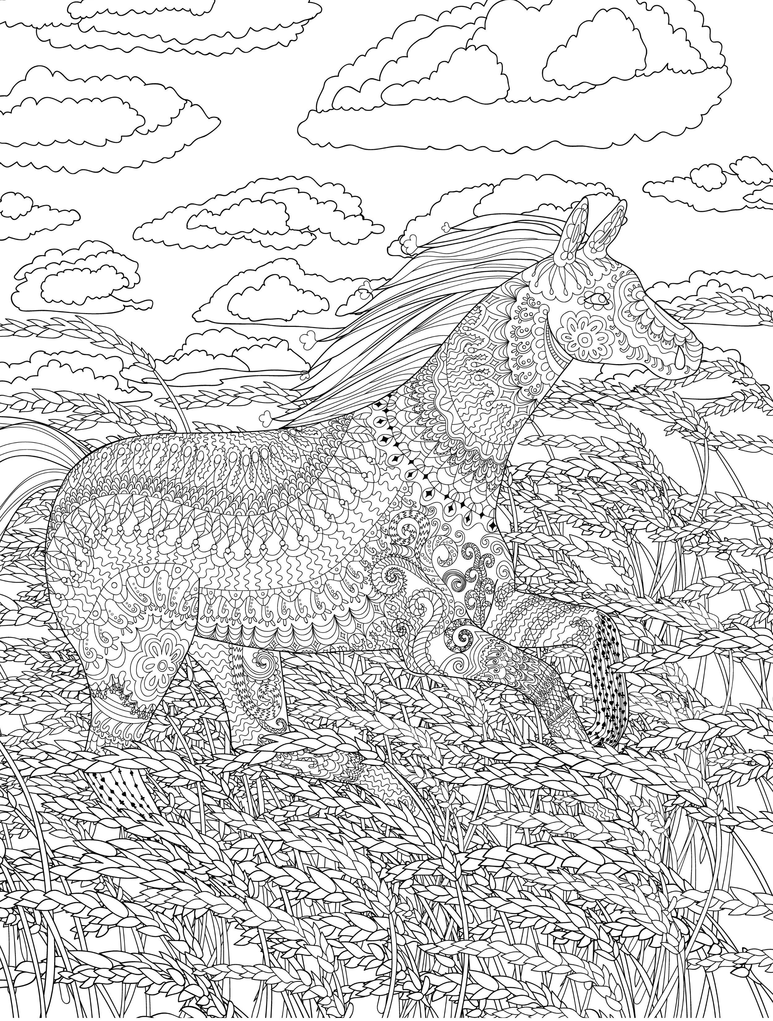Pin On Adult Coloring Pages [ 3300 x 2500 Pixel ]