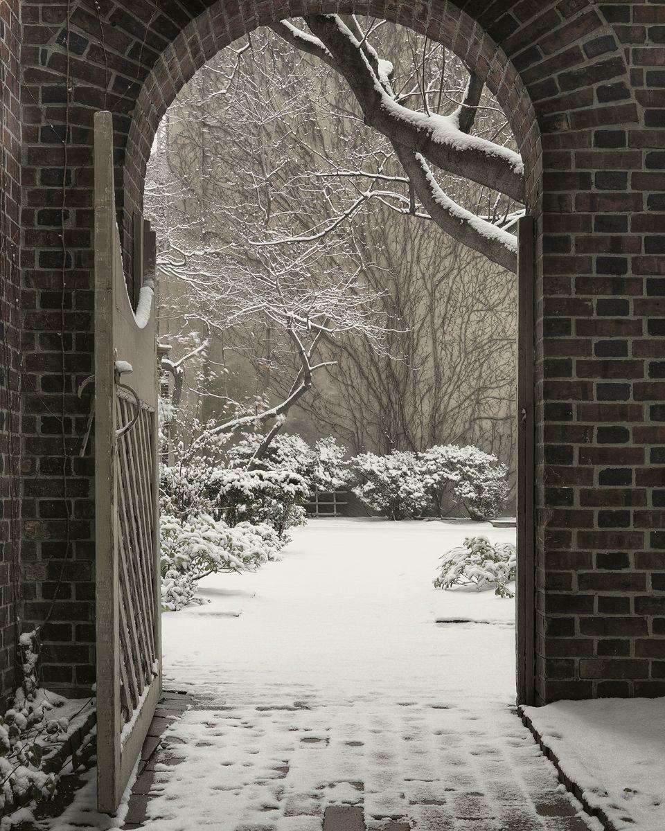 The Secret Garden Door #snowy #trees #gardendoor