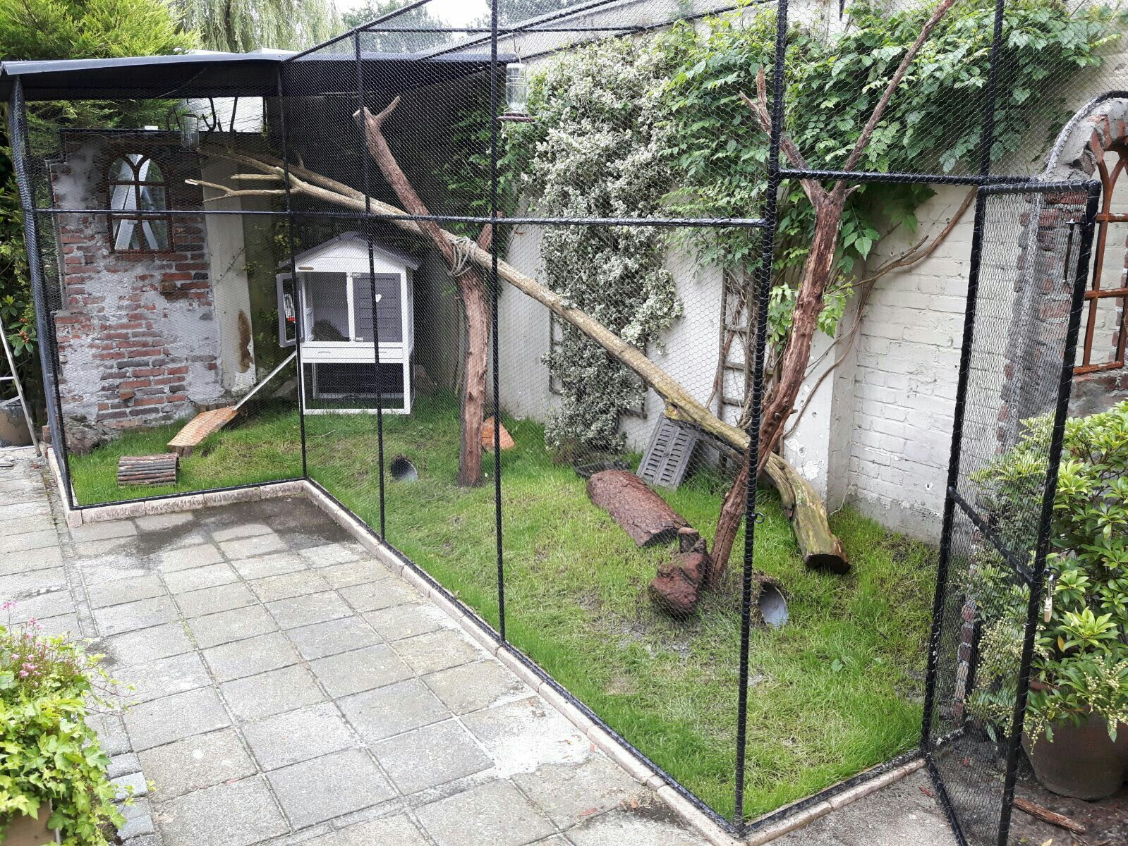 Rabbithouse outdoor konijnenren konijnenkooi buiten for Outdoor rabbit enclosure ideas