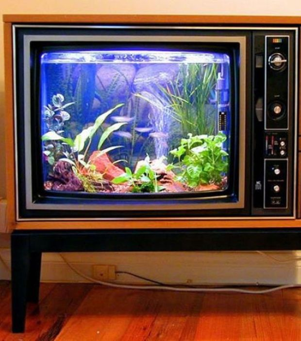 16 photos d 39 anciens objets transform s en objets du quotidien vielle television aquarium. Black Bedroom Furniture Sets. Home Design Ideas
