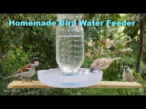 How To Make A Bird Feeder Diy Homemade Plastic Bottle Bird Feeder Youtube Homemade Bird Feeders Humming Bird Feeders Diy Bird Feeder