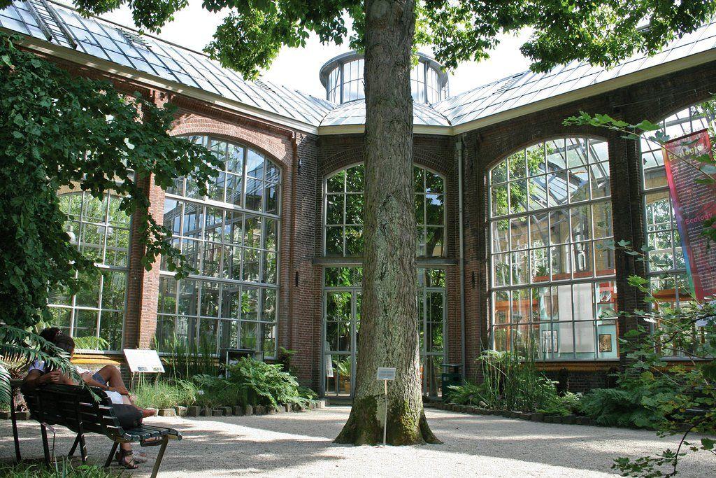 Botanischer Garten Hortus Botanicus Amsterdam Aktuelle 2018 Lohnt Es Sich Amsterdam Botanischer Garten Schone Orte