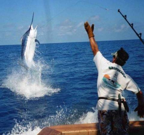 At the top of jordan 39 s bucket list deep sea fishing for for Deep sea fishing california
