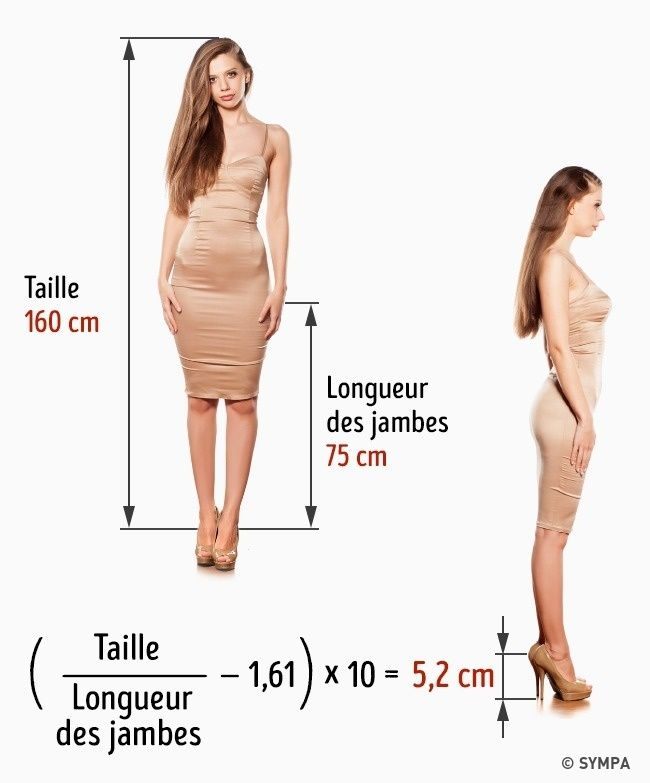 taille ideale femme