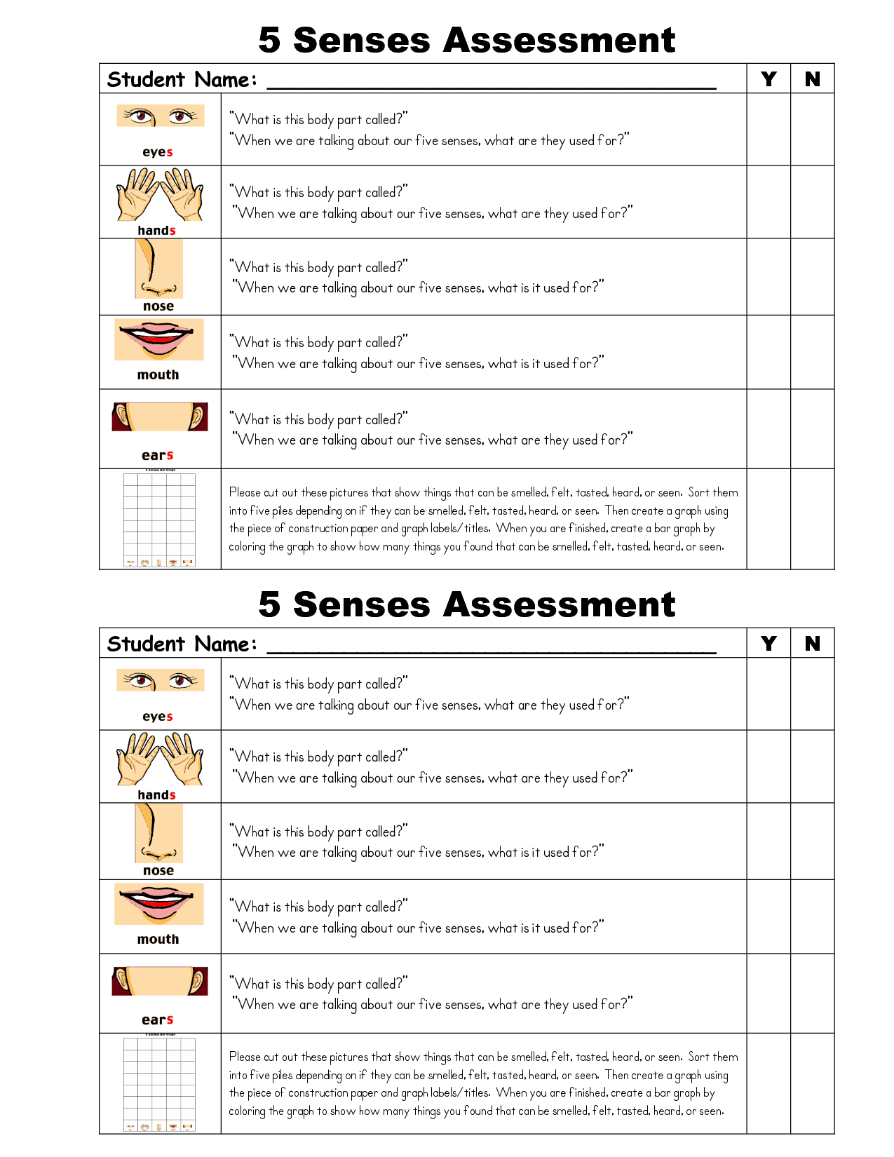 5 Senses Infographics