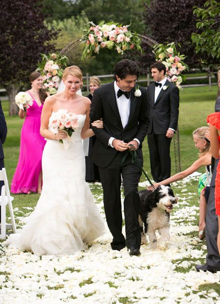 Can Our Dog Pare In The Wedding Ceremony
