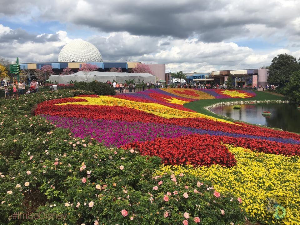 Dates Revealed For 2017 Epcot International Flower And Garden Festival U2013 90  Days Long Again